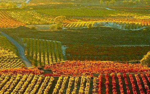 la rioja glamglam 1 480x300 - La Rioja